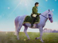 Бесплатный сказкомарафонИнны Власенко: Принцна белом коне