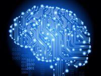 Нейробиолог рассказал, как «прошить» мозг на ошеломляющий успех