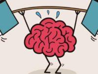 Что происходит с мозгом, когда мы учимся